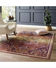 Modway Success Kaede Transitional Distressed Vintage Floral Persian Medallion 4x6 Area Rug, Multicolored